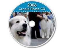 2006-2012-CD-Great-Pyrenees-Club-of-Americas-National-Specialty-Photos-by-GoldFish-Communications-Debra-Fisher-Goldstein-MN