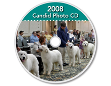2008-CD-Great-Pyrenees-Club-of-Americas-National-Specialty-Photos-by-GoldFish-Communications-Debra-Fisher-Goldstein-MN