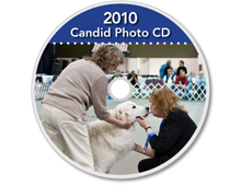2010-CD-Great-Pyrenees-Club-of-Americas-National-Specialty-Photos-by-GoldFish-Communications-Debra-Fisher-Goldstein-MN