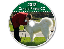 2012-CD-Great-Pyrenees-Club-of-Americas-National-Specialty-Photos-by-GoldFish-Communications-Debra-Fisher-Goldstein-MN