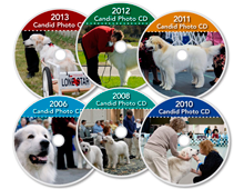 All-CDs-Great-Pyrenees-Club-of-Americas-National-Specialty-Photos-by-GoldFish-Communications-Debra-Fisher-Goldstein-MN