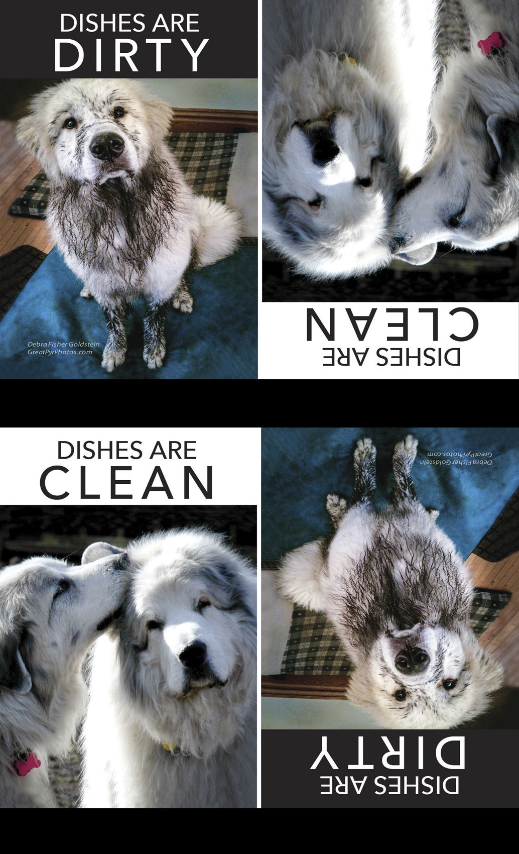 Dishes-are-clean-magnet