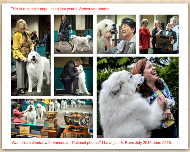 Pyrr-Page-Inside-Calendar-The-Topeka-National-Specialty-Great-Pyr-Sized-Photo-Calendar-by-Debra-Fisher-Goldstein2