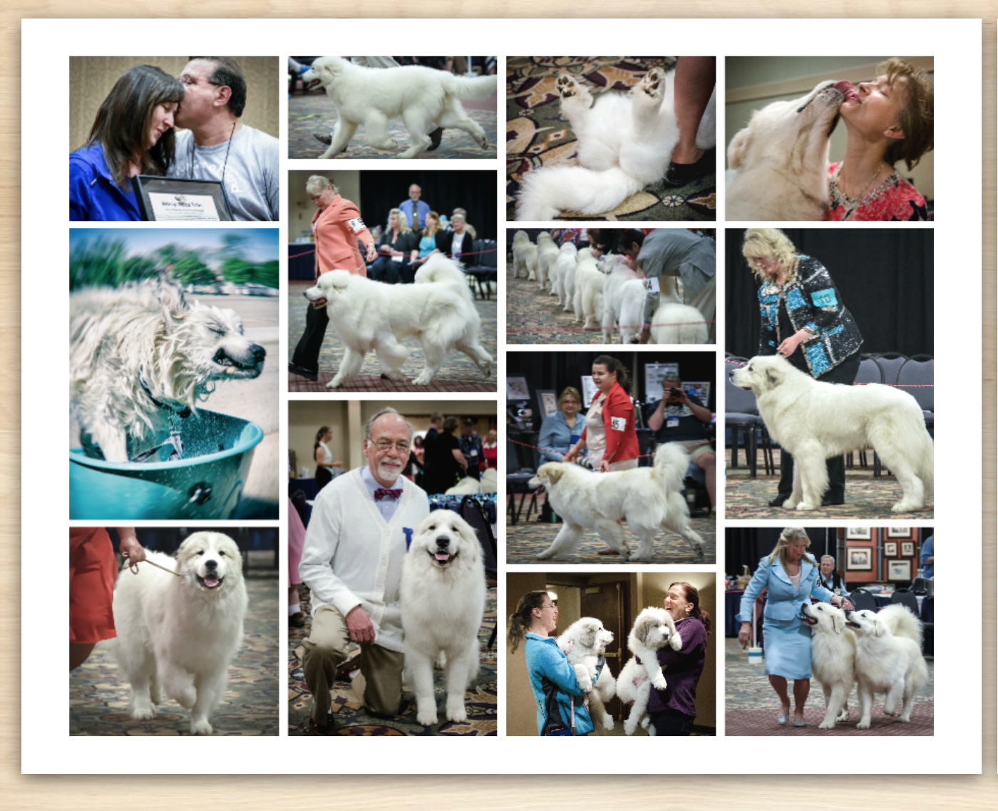 2 -The Great Pyr-sized Topeka National Photo Calendar