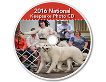 The-Matamoras-National-Specialty-Great-Pyr-Sized-Photo-CD-Thumb
