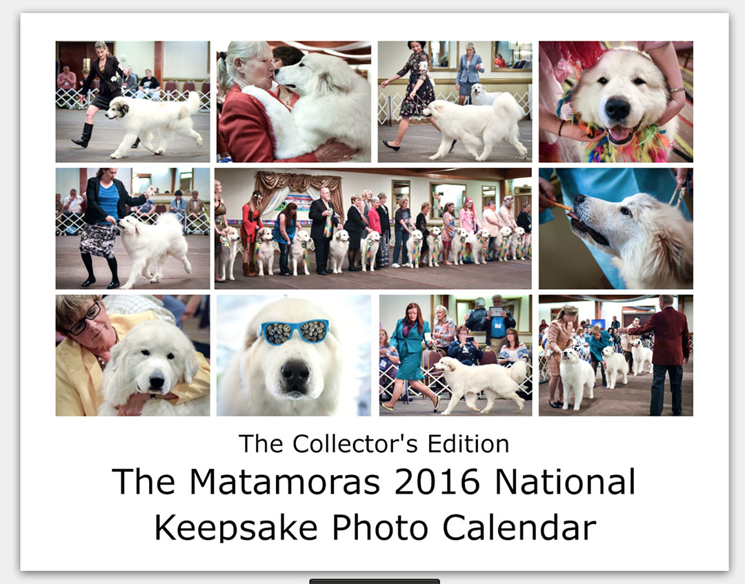 The-Matamoras-National-Specialty-Great-Pyr-Sized-Photo-Calendar