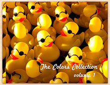 Thumb-Overcrowded-Midway-The-Colors-Collection-Volume-1-by-Debra-Fisher-Goldstein