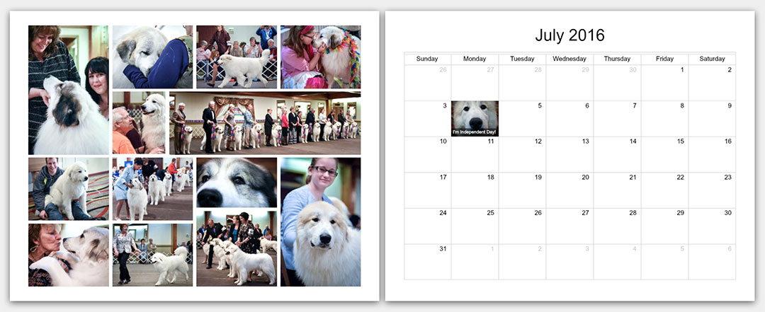 p1-The-Matamoras-National-Specialty-Great-Pyr-Sized-Photo-Calendar